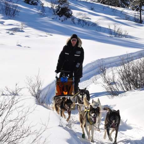 Hundeschlitten Sky High Valley