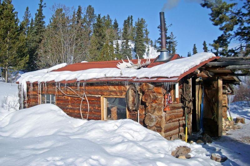 Trapper Fuzzi Ist Auf Dem Weg Nach Alaska