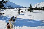 11 Tage Trapper Trail Tour