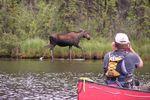 Verborgene Flüsse - Beaver River