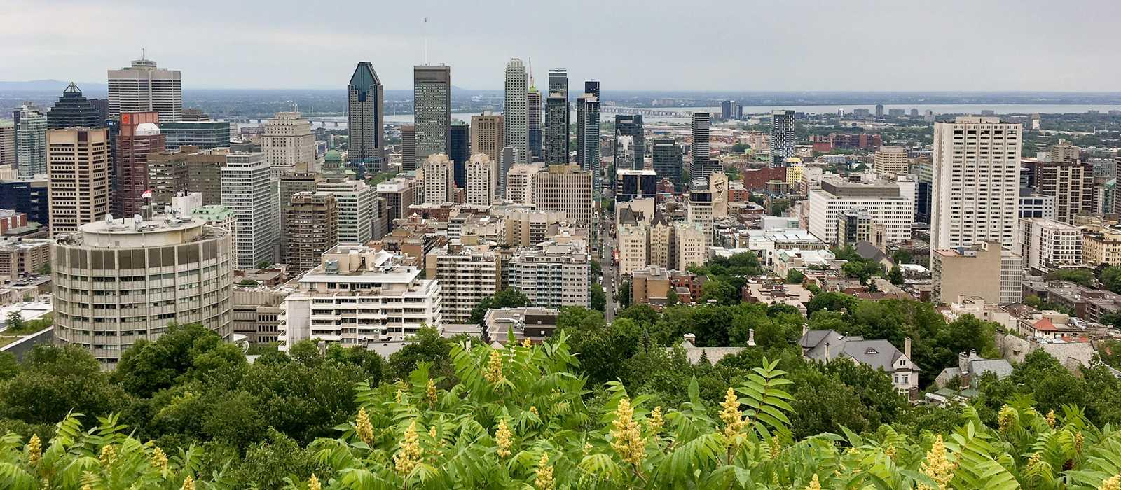 Ausblick auf Montréal vom Mont Royal