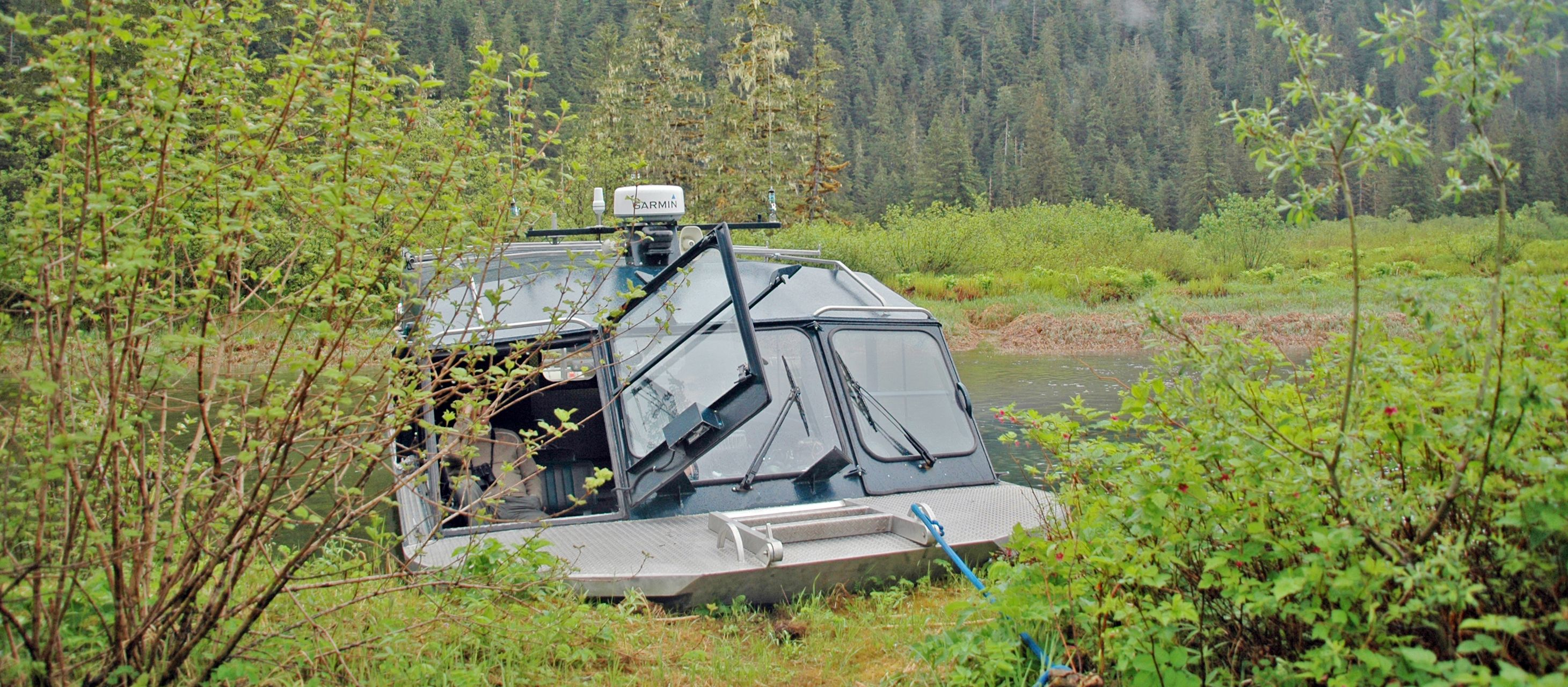Stikine River Tour von Alaska Waters