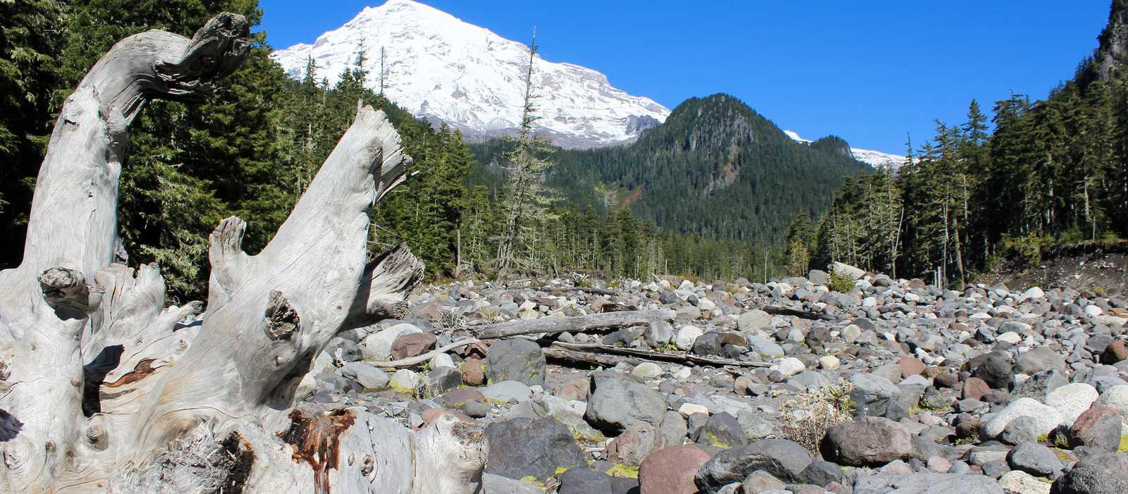 Blick auf den Mount Rainier