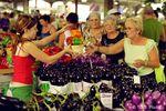 Jean-Talon Markt © TQ/ S. Poulin