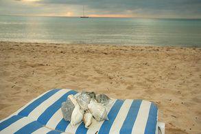 Am Strand von EleutheraMuscheln sammeln auf Eleuthera, Bahamas