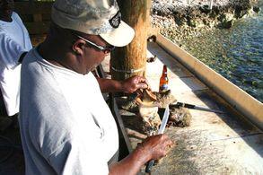 Staniel Cay auf den Exumas, Bahamas