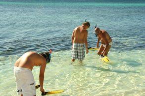 Schnorchel-Ausflug von Greenwood nach Port Howe