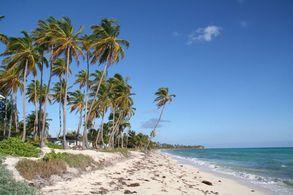 Strand von Bimini
