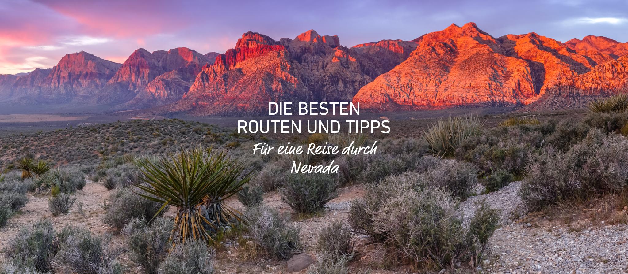 Banner für die Nevada Scenic Routes