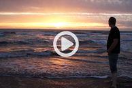 Entdecken Sie Monterey's vegane Welt