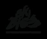 Ski Big 3 Logo
