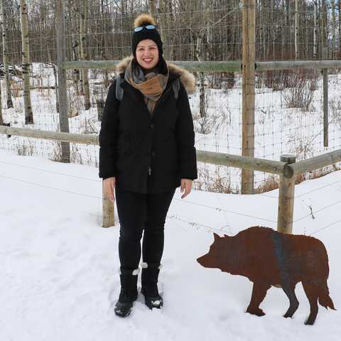 Mitarbeiterin Sarina Keil in der Yamnuska Wolfdog Sanctuary in Alberta