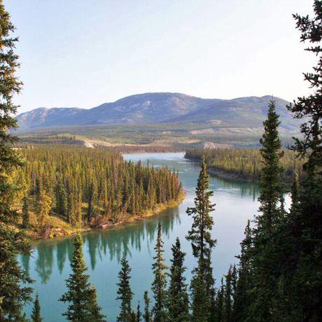 Yukon River bei Whitehorse