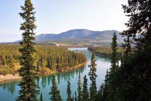 Blick auf den Yukon River in Kanada