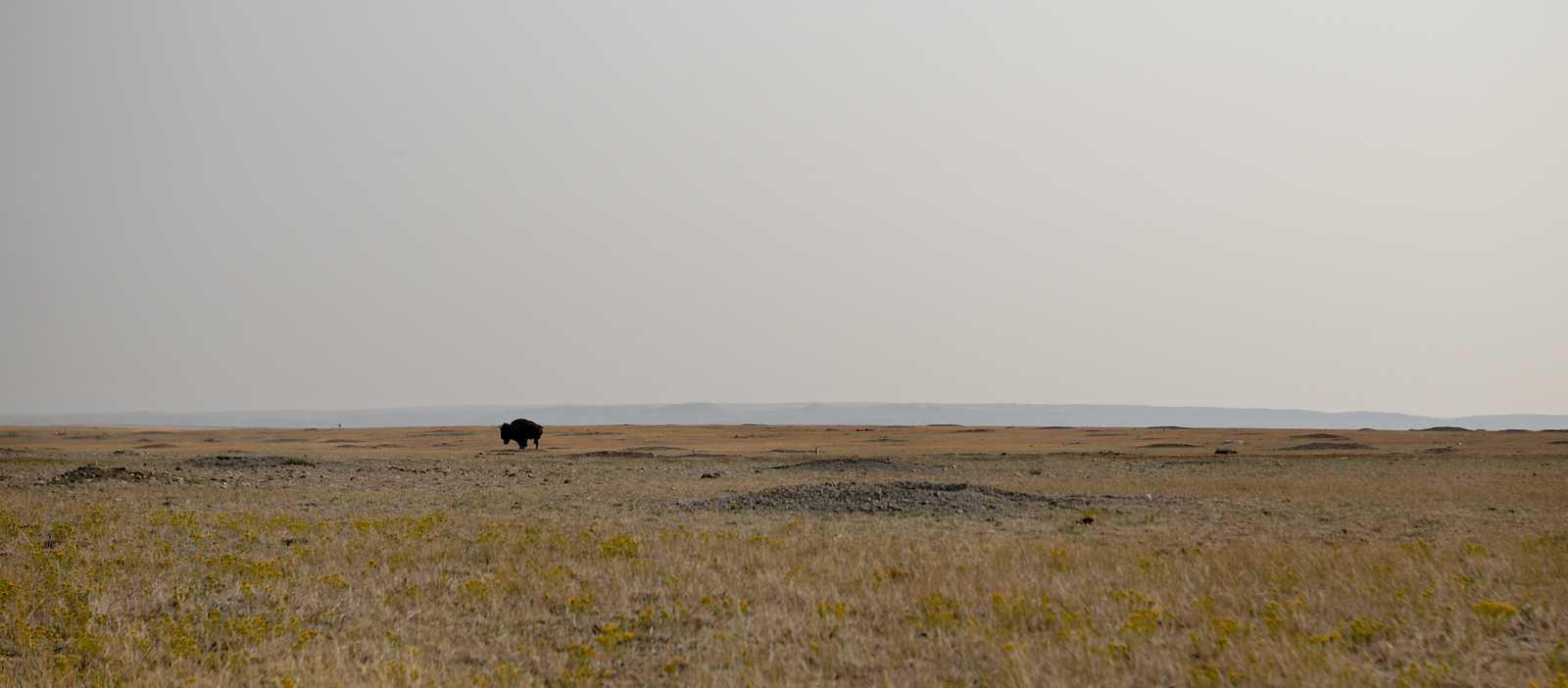 Die ebene Landschaft im Grasslands Nationalpark in Saskatchewan