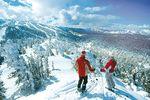 Ski-Safaris Nordamerika