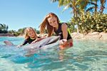 Discovery Cove Resort Packages