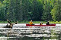 Indian Summer in Ost-Kanada