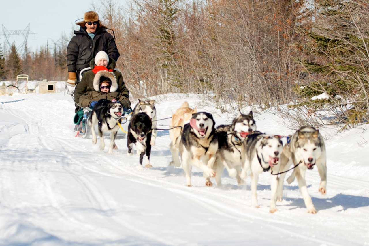 Hundeschlittentour in Nordkanada