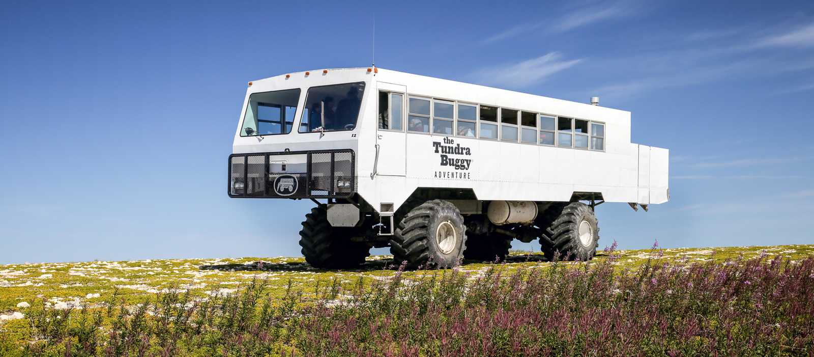 Park Buggy, Frontiers North Adventures