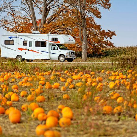 Canadream MHA Midi Motorhomeam Kürbisfeld im Herbst, Ontario
