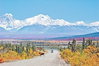 Alaska Natur pur im Sommer