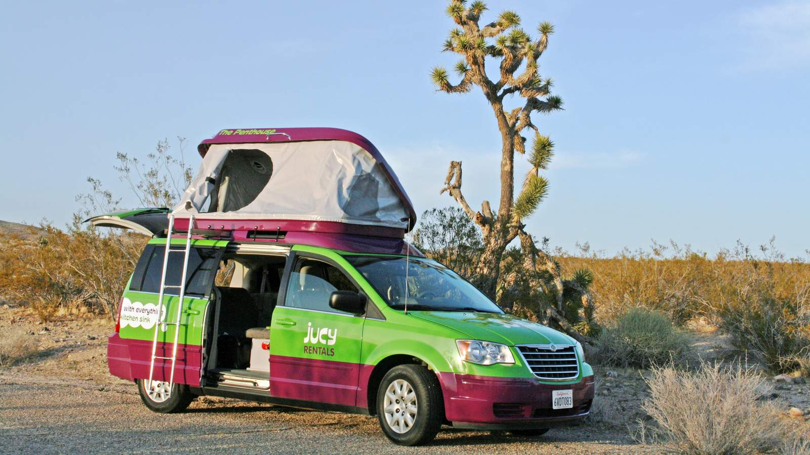 JUCY Champ Im Joshua Tree National Park