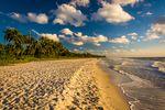 Florida Sunshine & New York