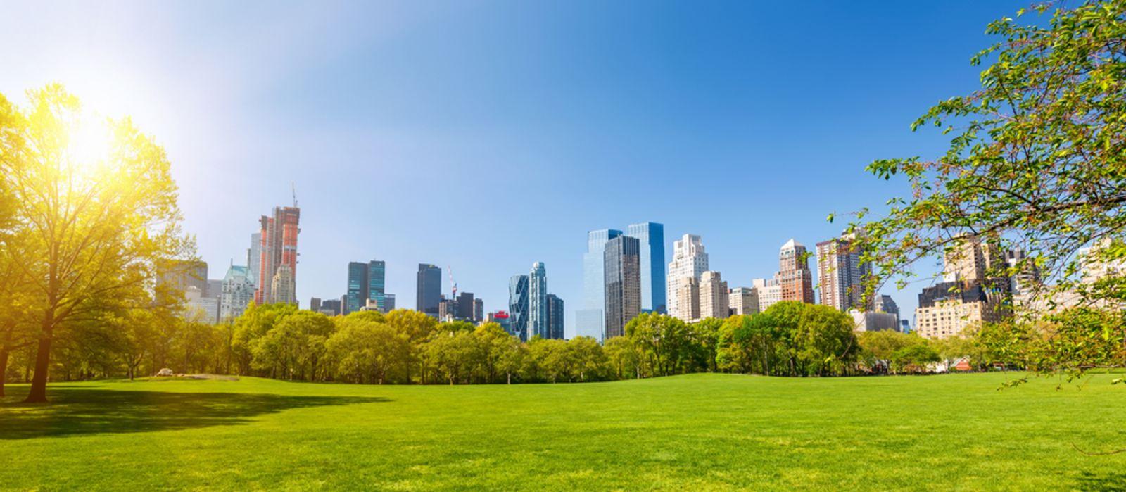 Central Park in Manhattan im Sommer