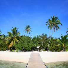 Der Strand am Tiamoresort auf den bahamas
