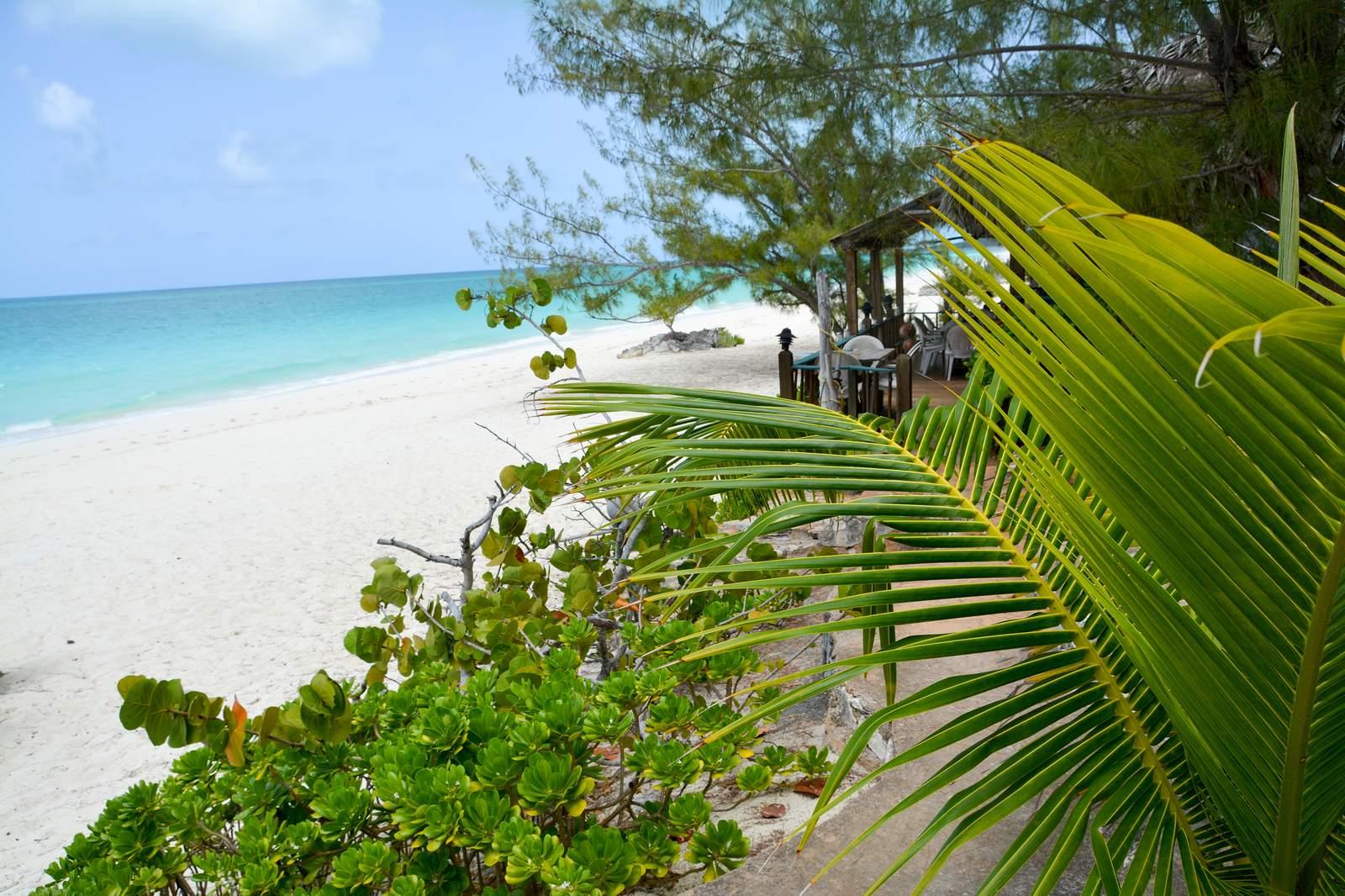 Strandbar und Strand des Pigeon Cay Beach Club