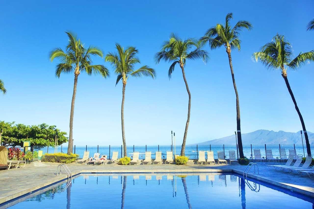 Shores Resort And Spa Jobs