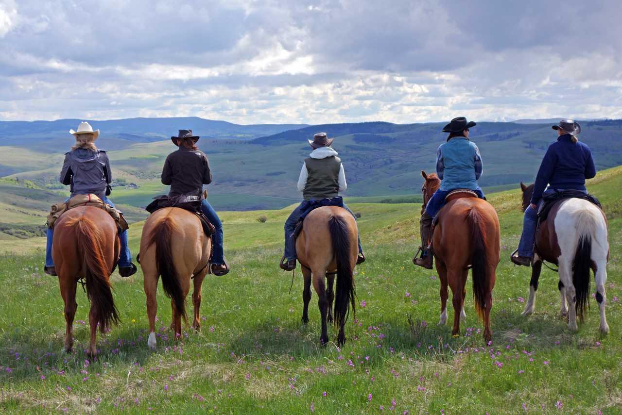 Impression Lucasia Ranch