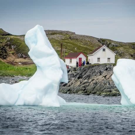 Eisberge vor dem Quirpon Island Inn