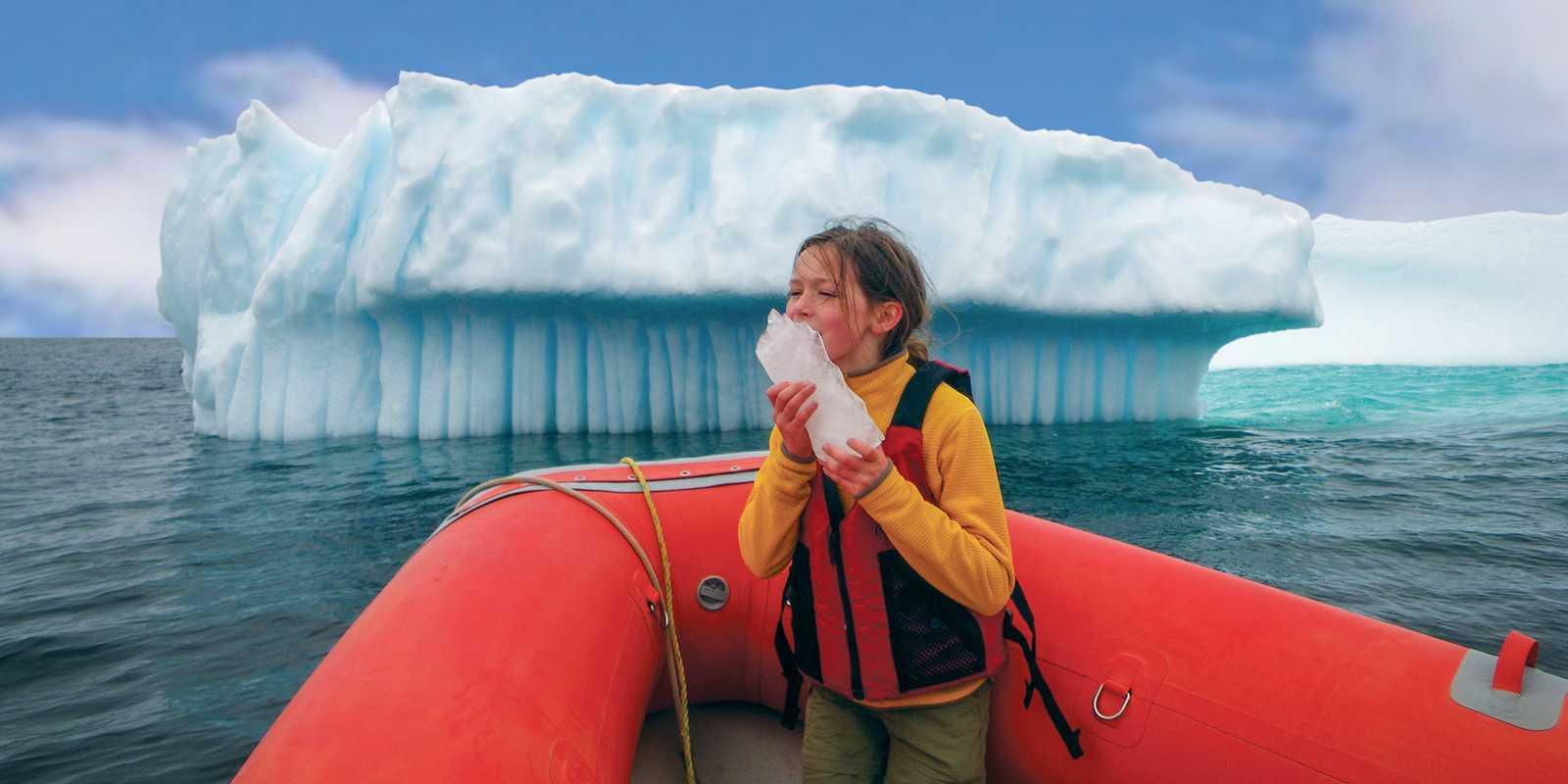 Den Eisbergen ganz nah