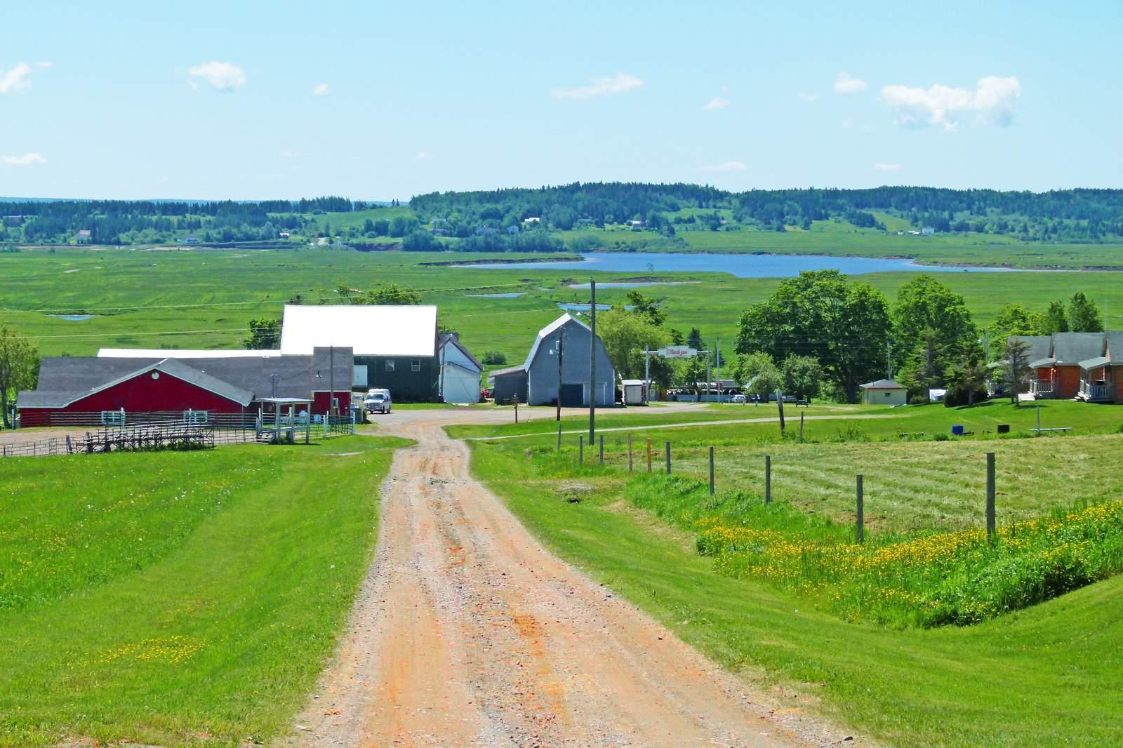 Broadleaf Guest Ranch