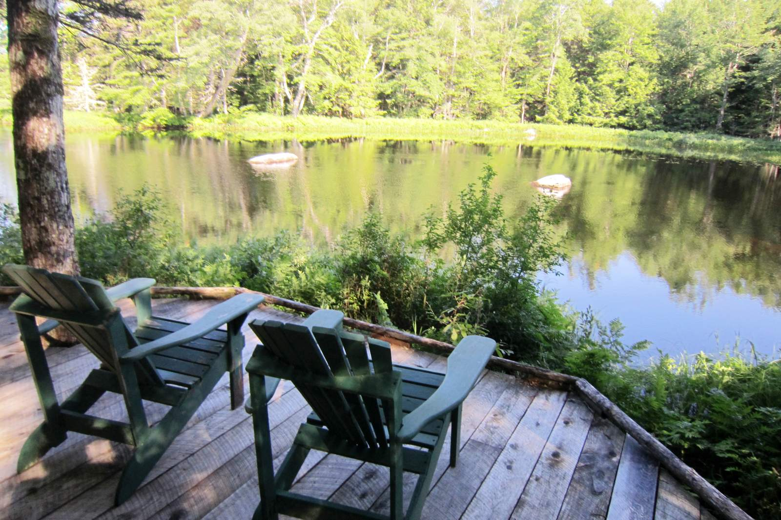 Ausblick auf den Harry Lake