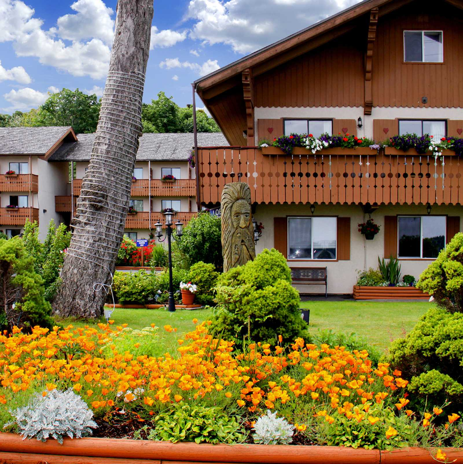 Best Western Hotel Campbell River British Columbia
