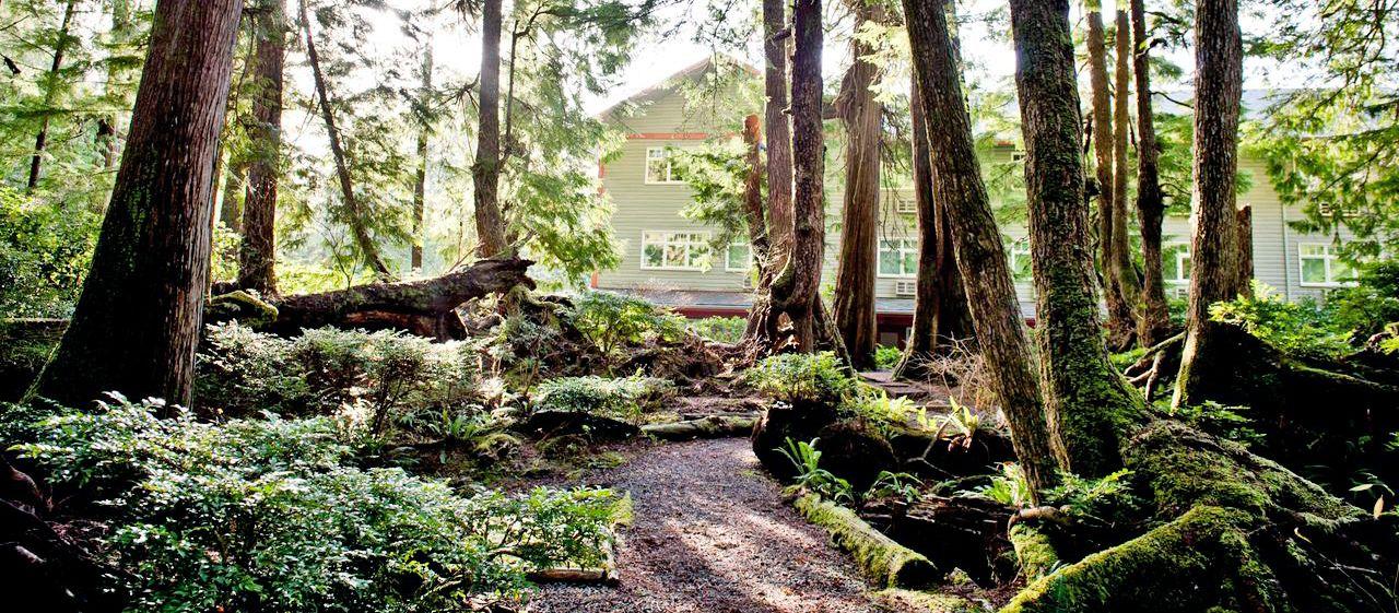 Impression Jamie's Rainforest Inn