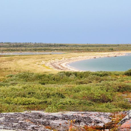 Ein Strandabschnitt in Churchill, Manitoba