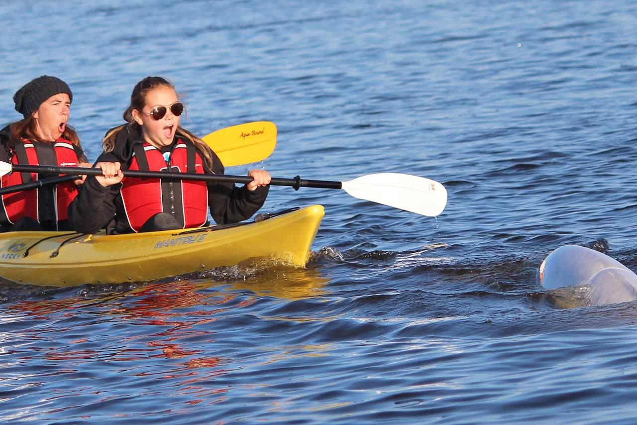 Kayaktour der Lazy Bear Lodge in Churchill, Manitoba