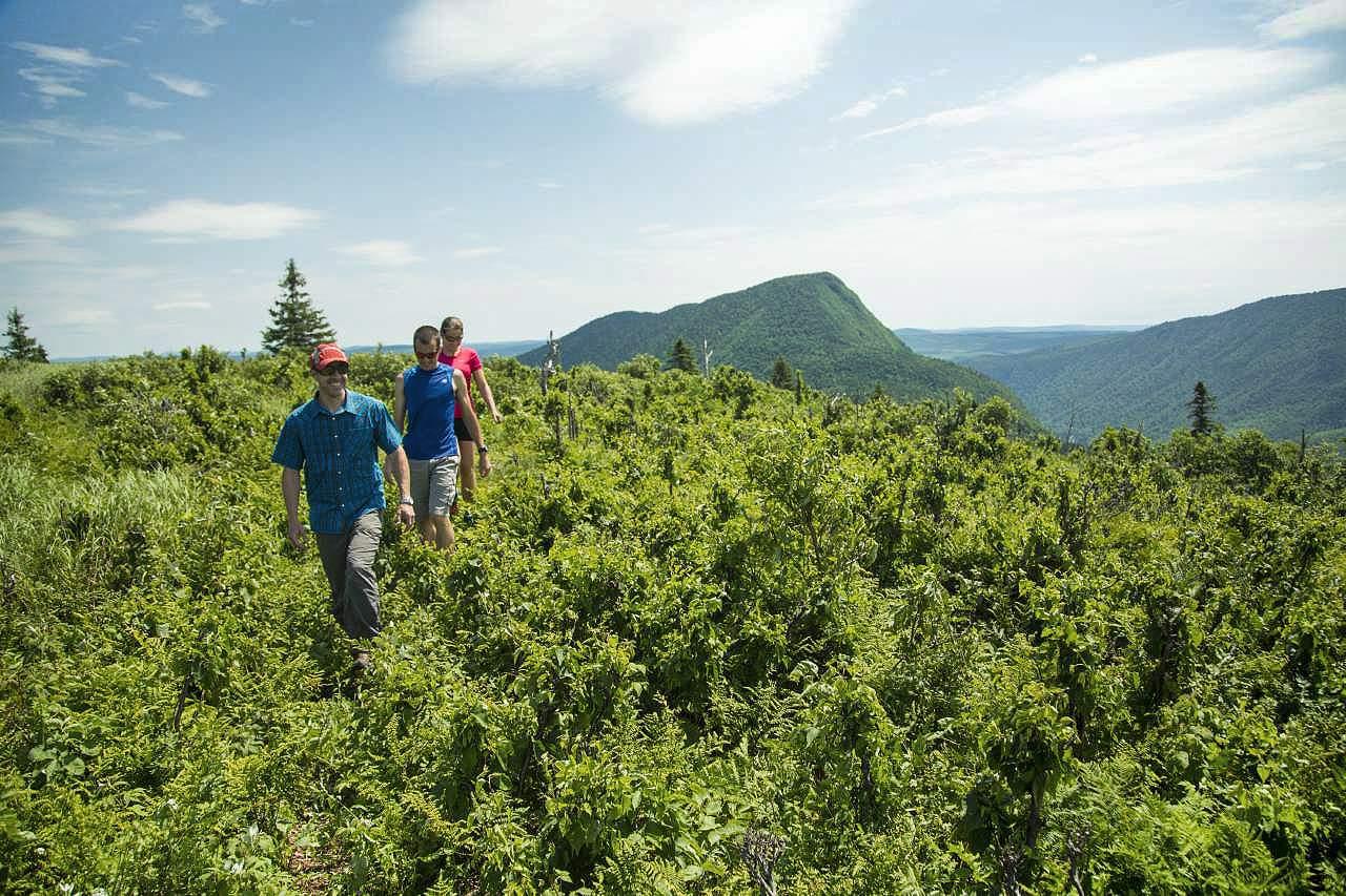 Wandern in der Umgebung der Chic-Chocs Mountain Lodge in Quebec
