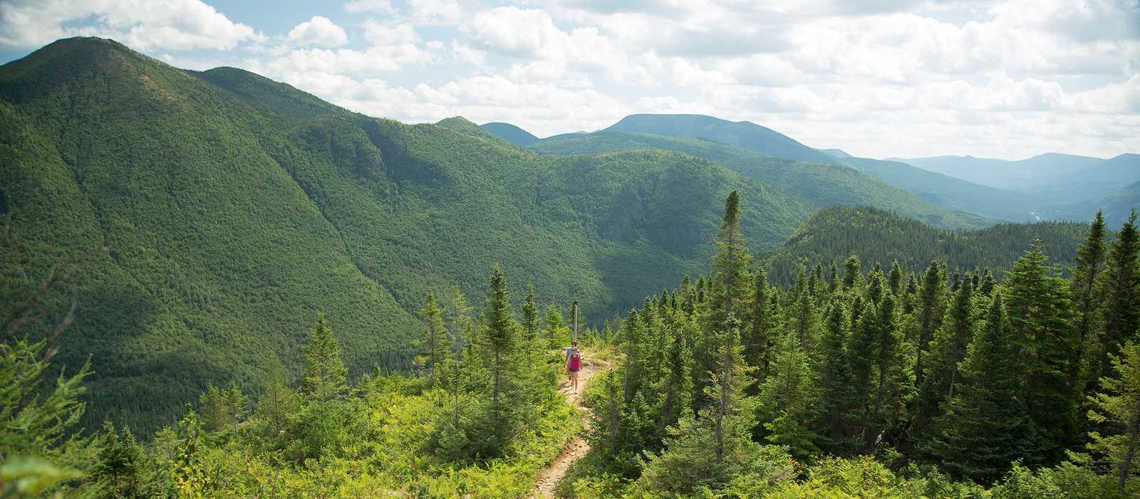 Wandern im Parc National de la Gaspésie in der Nähe des Le Gite-du-Mont-Albert