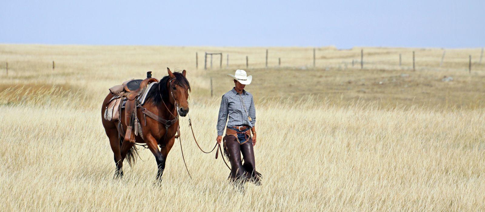 Impression La Reata Ranch