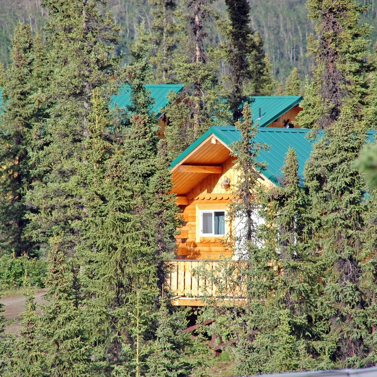 Denali Grizzly Bear Resort Hotel