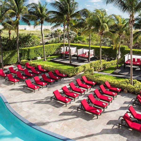 Hotel, Florida: Hilton Bentley South Beach