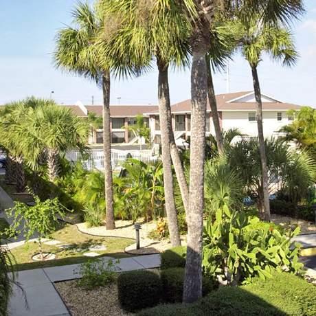 Palm Manor Condominiums