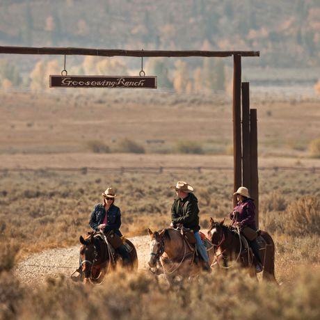 Impressionen Goosewing Ranch