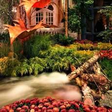 Impressionen Bellagio Resort
