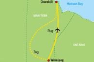 Reiseverlauf der Eisbären-Beobachtung in Churchill